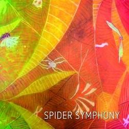 MAM021 Spider Symphony
