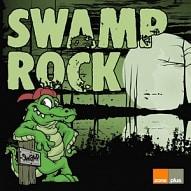 ZONE 539 Swamp Rock