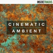 INSD 105 Cinematic Ambient