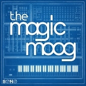 SOHO 188 The Magic Moog