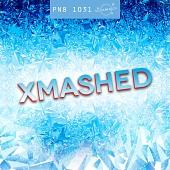 PN8 1031 Xmashed