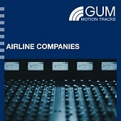 GMT8151 Airline Companies