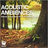 BLE542_Acoustic Ambiences