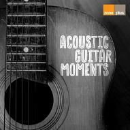 ZONE 596 Acoustic Guitar Moments
