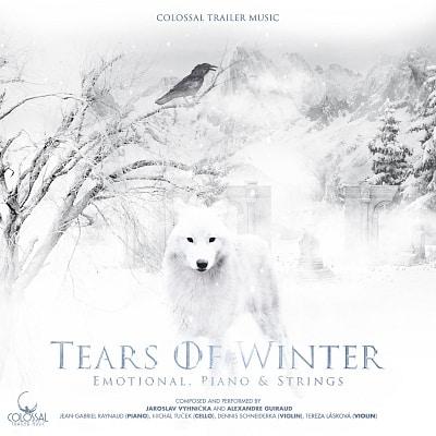 Tears Of Winter artwork
