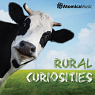 Rural Curiosities